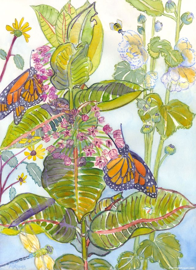 1.Monarchs-and-Mikweed-3-17-2016