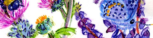 Detail Collage from Karner Blue & Wild Lupine Endangered Species