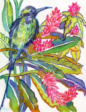 © Michelle-Kogan-Malachite-Sunbird, watercolor and watercolor pencil.
