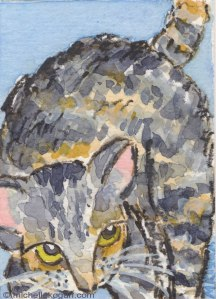 ©-mkogan-cat-aceo1