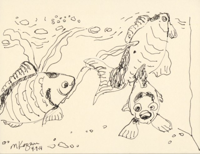 ©--M-Kogan-Amber-Commet-Fish-