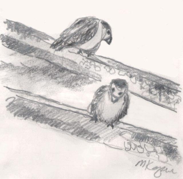 Michelle-Kogan-©-Haiku-april-5-elusive-birdie