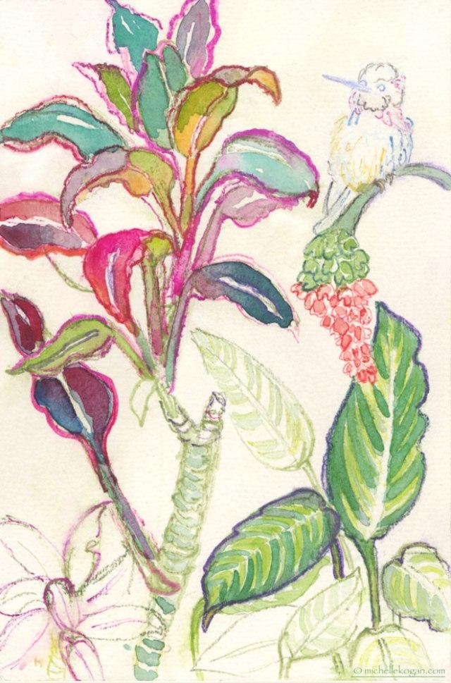 WIP--M-Kogan-Lincloln-Pk-Conservatory-plant-&-humming-bird
