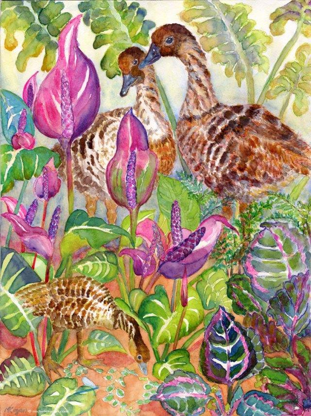 ©-Michelle-Kogan-Nene-Endangered-Hawaiian-Goose-2014