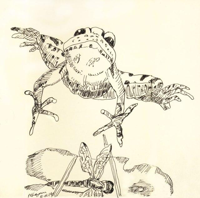 ©-Michelle-Kogan--Bullfrog-jumping--10-02-2014- #inktober