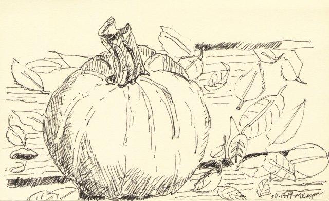 _©-Michelle-Kogan-Yellow-Pumpkin-10-15-2014-