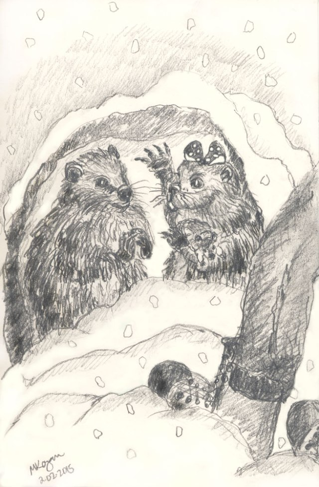 M-Kogan--©-Phyllis-&-Phil-Groundhogs-©--2-02-2015