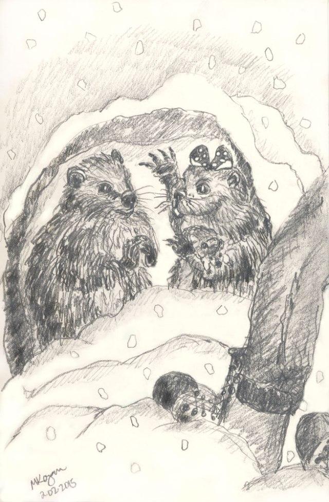 M-Kogan--©-Phyllis-&-Phil-Groundhogs-©--2-02-2015