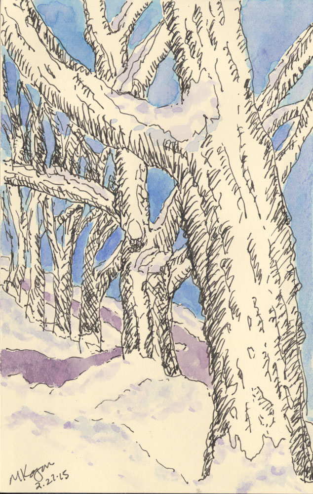 M-Kogan--Trees-in-snow-2-27-2015