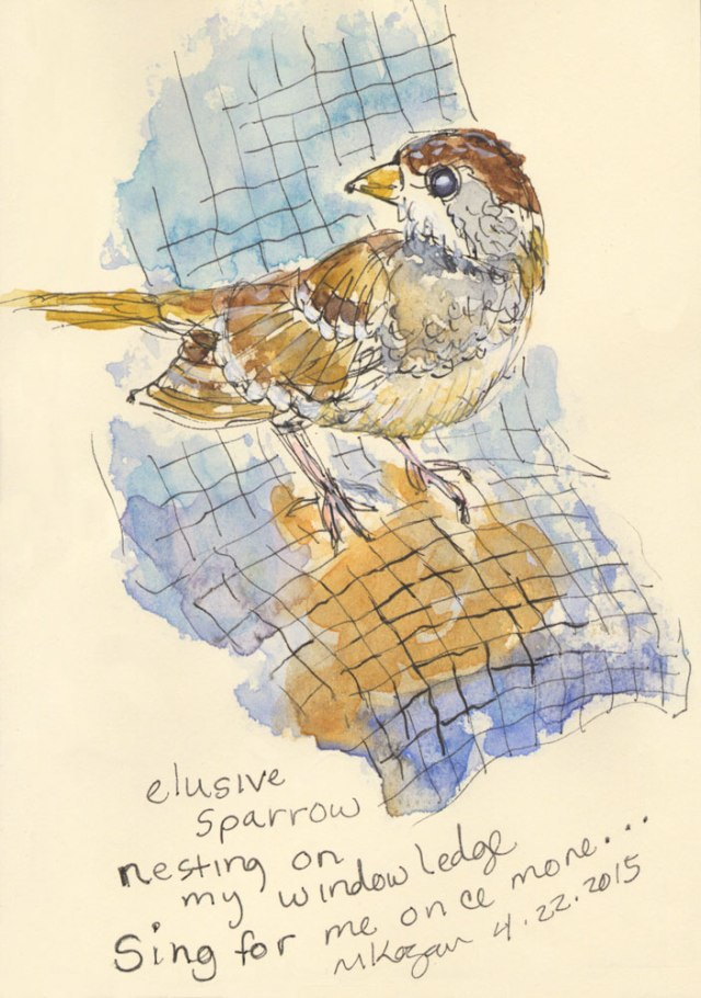 mkogan-©--Elusive-Sparrow-on-wire-4-22-2015