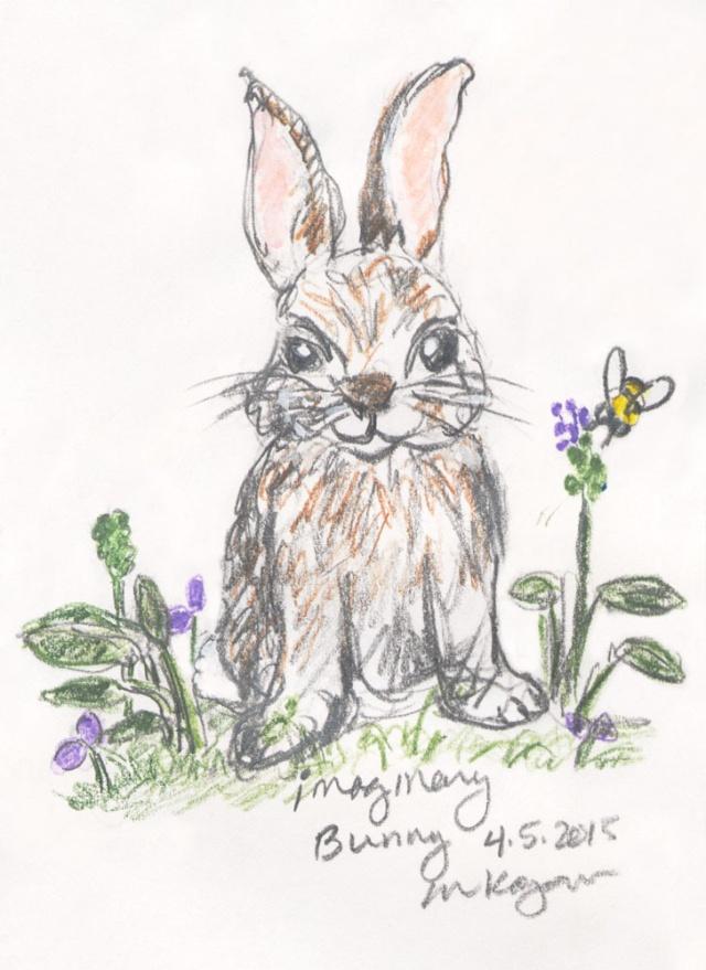 mkogan-©-Missing-Critter-Call-Imaginary-Bunny--4-5-2015