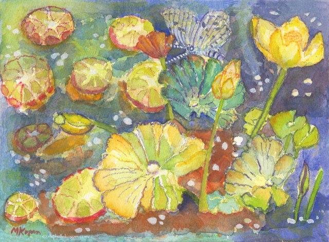 mkogan-©-1Water-lilies-&-Blue-Azur-Butterfly-5-13-2015