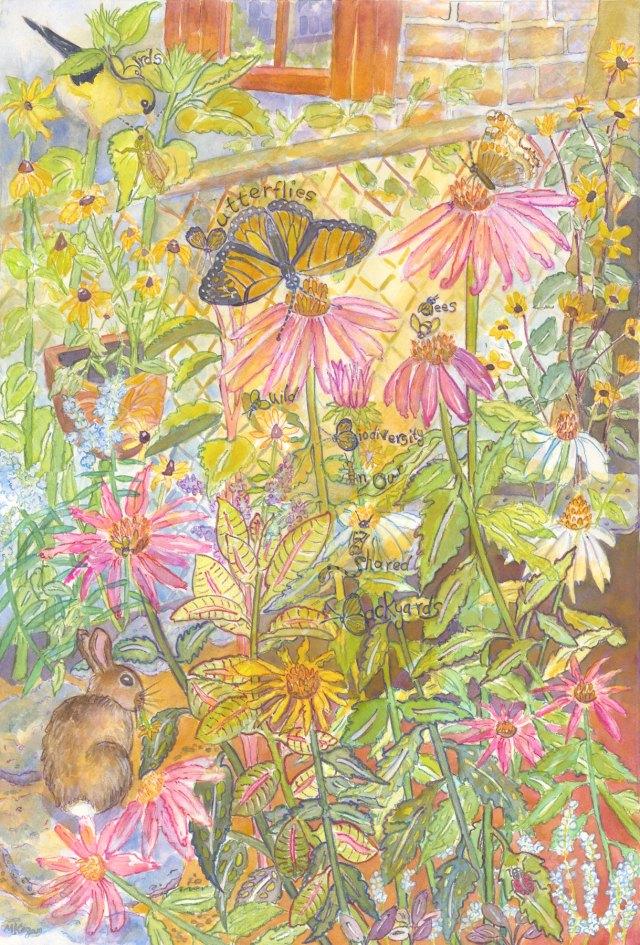 Bird-bees-butterflies-biodivestiy-6-2-2015
