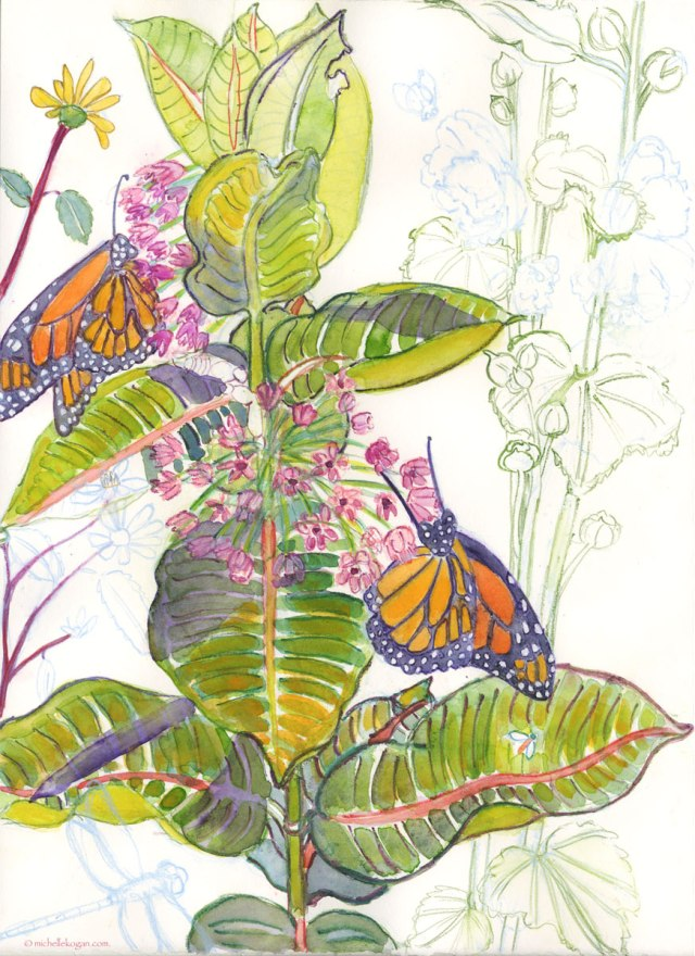Monarchs-on-Milkweed-WIP-8-22-2025