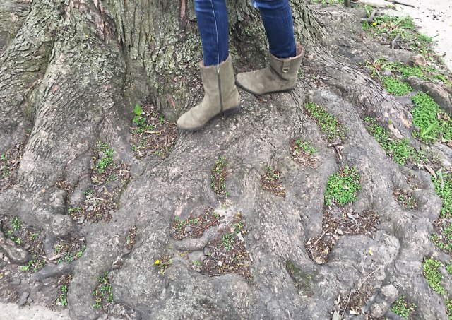 1.-Rachel-on-Tree-Roots-5-3-2016
