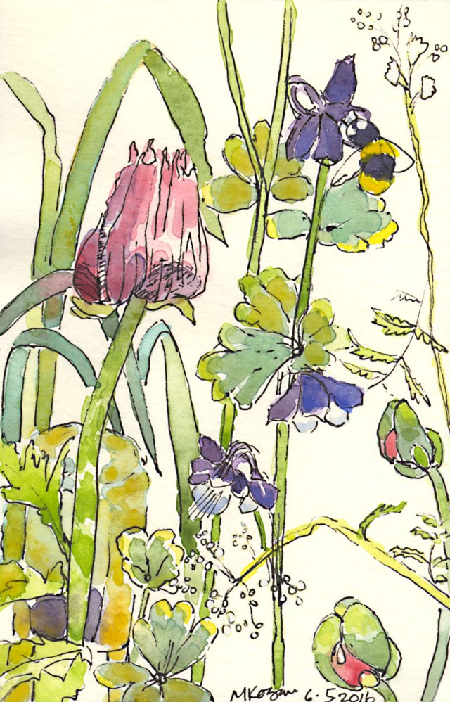 1.Menagerie-of-Flowers-and-Bee-6--6-2016