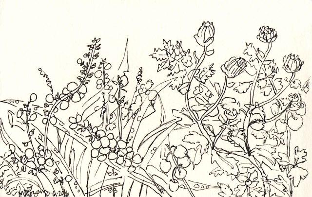 1-fall-garden-inktober-10-06-2016