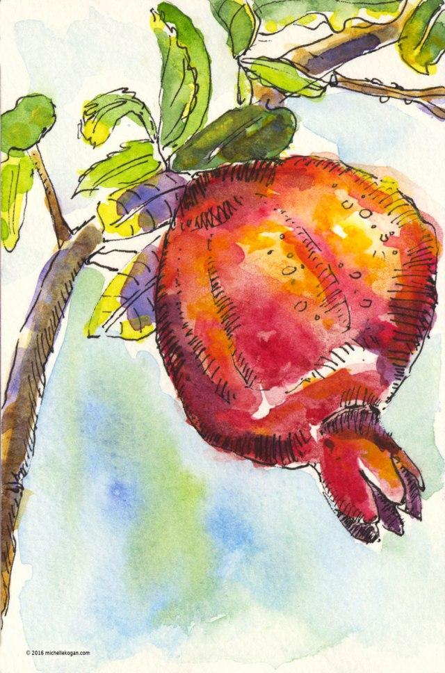 1-pomegranite-vine-inktober-roshashanah10-03-2016