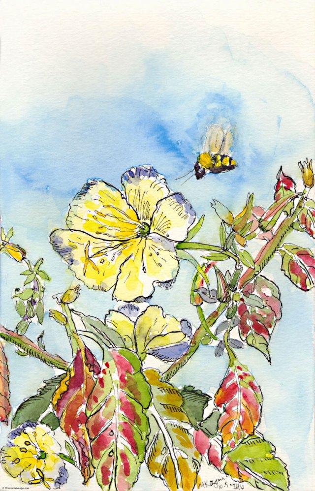 1a-evening-primrose-and-bee-inktober-m-kogan-10-05-2016