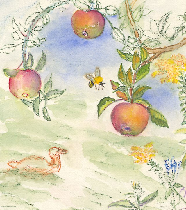Apples-and-Bee-Botanic-Garden-WIP--9-20-2017-copy