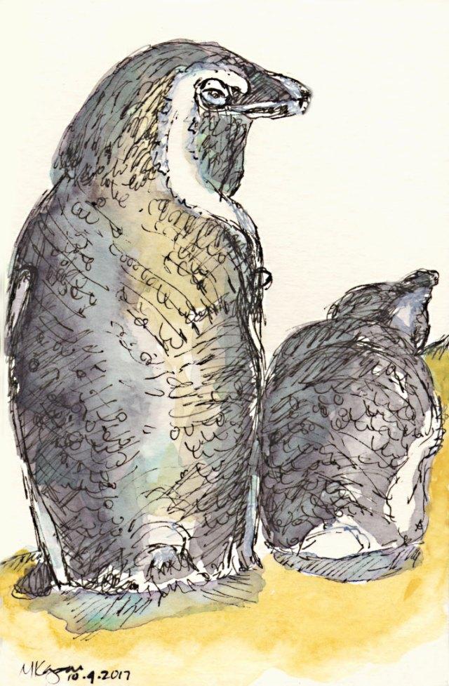 Inktober-day-4-African-Penguins-10-4-2017