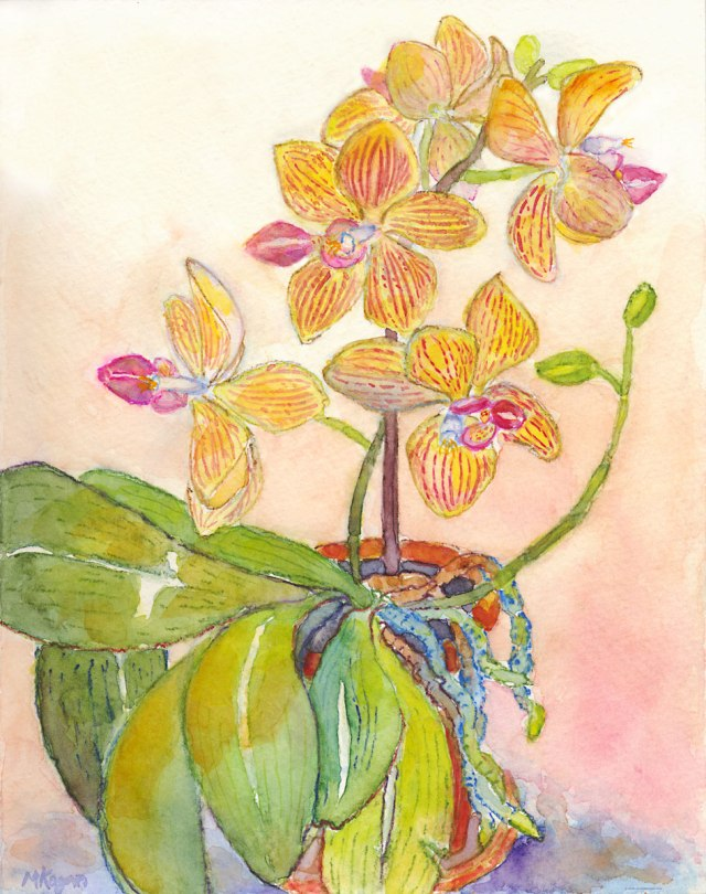 1.-Yellow-Orchid--July----07-2016