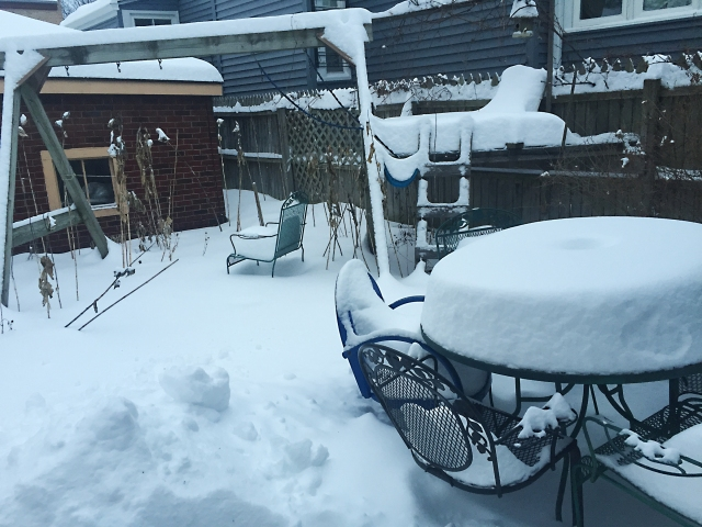 Snow-2-9-2018