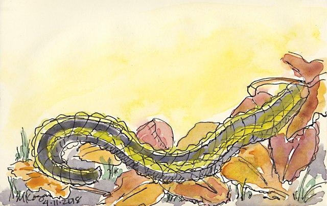 1-April-Snake--4-11-2018-