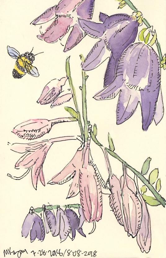 1-Ephraim-Flowers-Bee-8-9-2018