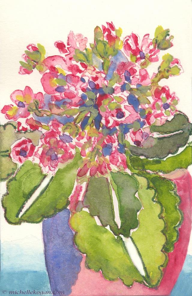 1-pink succulent 4-30--2019