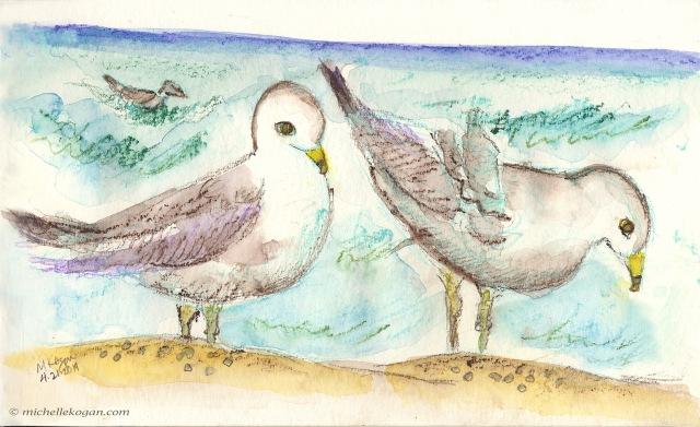 Earth Day Seagulls 4-22--2019
