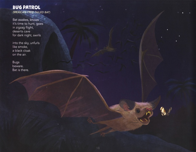 1-D Harrison's Book After Dark-Mexican Frr-Tailed-Bat 2-13-2020