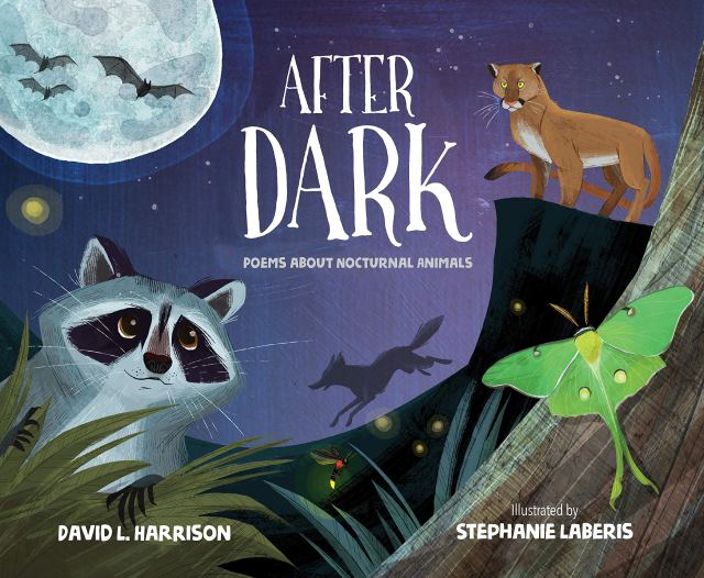 After Dark Cover David Harrison