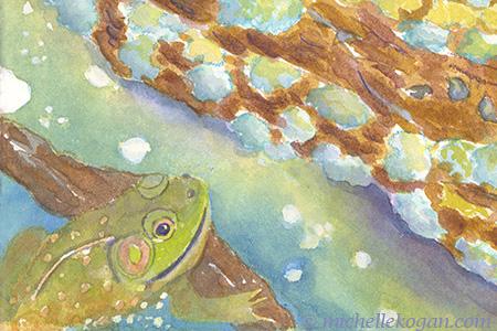 1- bullfrog from Anhinga,-3-18-2019