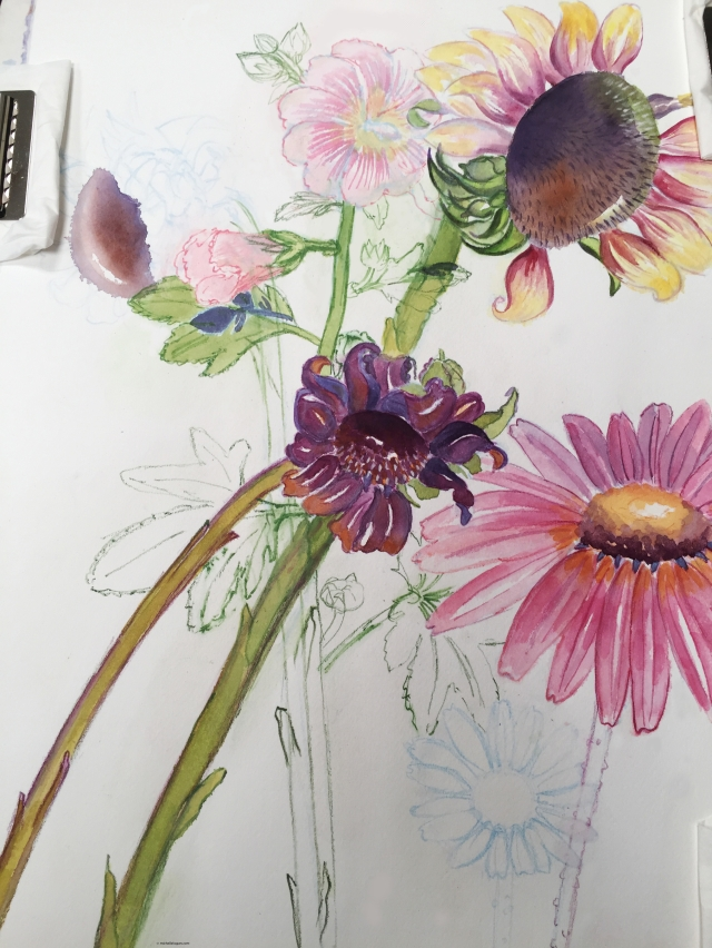 Sunflowers, coneflowers, hollyhocks WIP-7-20